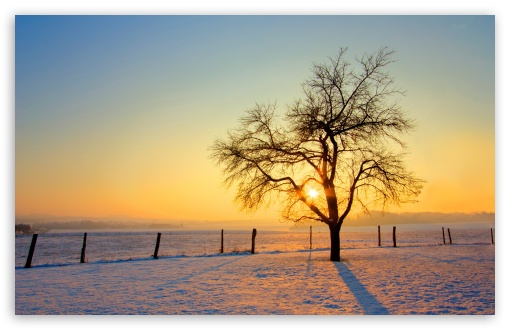 Winter Sunset HD wallpaper for Standard 4:3 5:4 Fullscreen UXGA XGA SVGA QSXGA SXGA ; Wide 16:10 5:3 Widescreen WHXGA WQXGA WUXGA WXGA WGA ; HD 16:9 High Definition WQHD QWXGA 1080p 900p 720p QHD nHD ; Other 3:2 DVGA HVGA HQVGA devices ( Apple PowerBook G4 iPhone 4 3G 3GS iPod Touch ) ; Mobile VGA WVGA iPhone iPad PSP Phone - VGA QVGA Smartphone ( PocketPC GPS iPod Zune BlackBerry HTC Samsung LG Nokia Eten Asus ) WVGA WQVGA Smartphone ( HTC Samsung Sony Ericsson LG Vertu MIO ) HVGA Smartphone ( Apple iPhone iPod BlackBerry HTC Samsung Nokia ) Sony PSP Zune HD Zen ; Tablet 2 Android ;