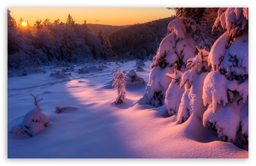 Winter Sunset Landscape HD wallpaper for Wide 16:10 5:3 Widescreen WHXGA WQXGA WUXGA WXGA WGA ; HD 16:9 High Definition WQHD QWXGA 1080p 900p 720p QHD nHD ; Standard 4:3 5:4 3:2 Fullscreen UXGA XGA SVGA QSXGA SXGA DVGA HVGA HQVGA devices ( Apple PowerBook G4 iPhone 4 3G 3GS iPod Touch ) ; Tablet 1:1 ; iPad 1/2/Mini ; Mobile 4:3 5:3 3:2 16:9 5:4 - UXGA XGA SVGA WGA DVGA HVGA HQVGA devices ( Apple PowerBook G4 iPhone 4 3G 3GS iPod Touch ) WQHD QWXGA 1080p 900p 720p QHD nHD QSXGA SXGA ;