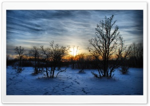 Winter Sunset Scene HD Wide Wallpaper for Widescreen