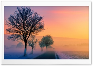Winter Sunset Scene Ultra HD Wallpaper for 4K UHD Widescreen desktop, tablet & smartphone