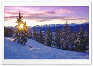 Winter Time HD Wide Wallpaper for Widescreen