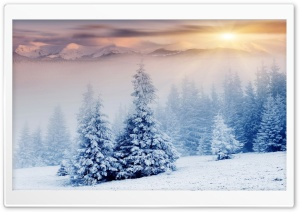 Winter Wonderland Ultra HD Wallpaper for 4K UHD Widescreen desktop, tablet & smartphone