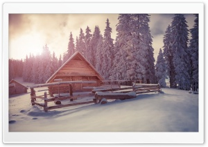 Winter Wooden Houses Under Snow HD Wide Wallpaper for 4K UHD Widescreen desktop & smartphone