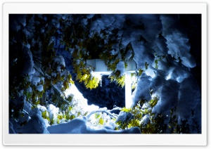 Winterlight HD Wide Wallpaper for Widescreen