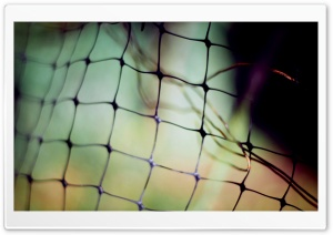 Wire Fence HD Wide Wallpaper for Widescreen