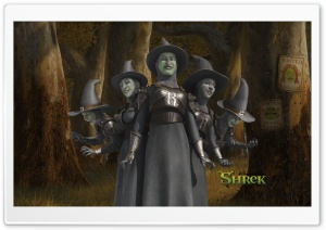 Witches, Shrek The Final Chapter HD Wide Wallpaper for Widescreen