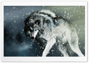 Wolf HD Wide Wallpaper for 4K UHD Widescreen desktop & smartphone