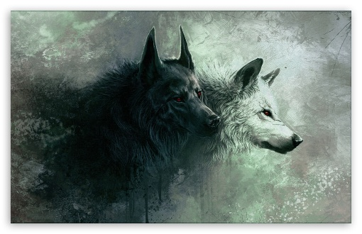 Wolf ❤ 4K UHD Wallpaper for Wide 16:10 5:3 Widescreen WHXGA WQXGA WUXGA WXGA WGA ; 4K UHD 16:9 Ultra High Definition 2160p 1440p 1080p 900p 720p ; Standard 4:3 5:4 3:2 Fullscreen UXGA XGA SVGA QSXGA SXGA DVGA HVGA HQVGA ( Apple PowerBook G4 iPhone 4 3G 3GS iPod Touch ) ; iPad 1/2/Mini ; Mobile 4:3 5:3 3:2 16:9 5:4 - UXGA XGA SVGA WGA DVGA HVGA HQVGA ( Apple PowerBook G4 iPhone 4 3G 3GS iPod Touch ) 2160p 1440p 1080p 900p 720p QSXGA SXGA ;