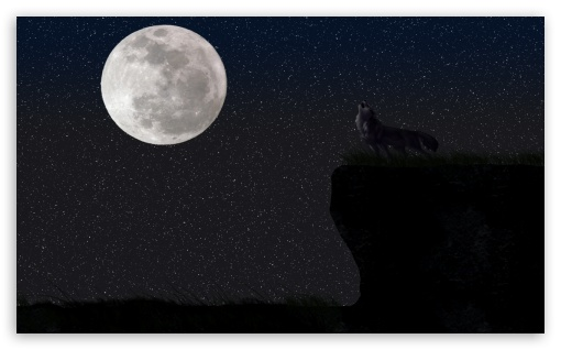 Wolf And The Full Moon HD wallpaper for Wide 5:3 Widescreen WGA ; HD 16:9 High Definition WQHD QWXGA 1080p 900p 720p QHD nHD ; Standard 4:3 Fullscreen UXGA XGA SVGA ; iPad 1/2/Mini ; Mobile 4:3 5:3 16:9 - UXGA XGA SVGA WGA WQHD QWXGA 1080p 900p 720p QHD nHD ;