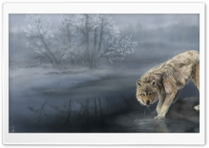 Wolf Drinking Water Painting HD Wide Wallpaper for Widescreen