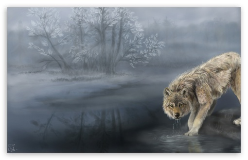 Wolf Drinking Water Painting HD wallpaper for Wide 16:10 5:3 Widescreen WHXGA WQXGA WUXGA WXGA WGA ; HD 16:9 High Definition WQHD QWXGA 1080p 900p 720p QHD nHD ; Standard 3:2 Fullscreen DVGA HVGA HQVGA devices ( Apple PowerBook G4 iPhone 4 3G 3GS iPod Touch ) ; Mobile 5:3 3:2 16:9 - WGA DVGA HVGA HQVGA devices ( Apple PowerBook G4 iPhone 4 3G 3GS iPod Touch ) WQHD QWXGA 1080p 900p 720p QHD nHD ; Dual 5:4 QSXGA SXGA ;