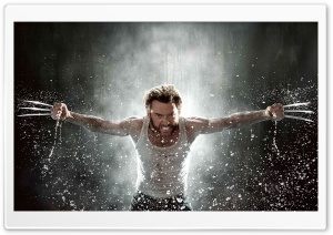 Wolverine 2013 HD Wide Wallpaper for Widescreen