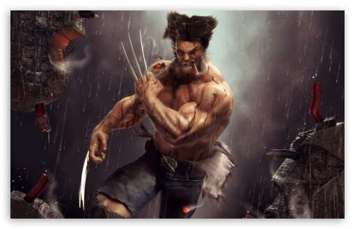 Wolverine Artwork 4k Hd Desktop Wallpaper For 4k Ultra Hd Tv
