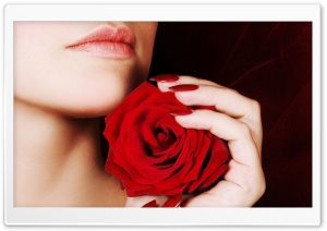 Woman Holding A Red Rose HD Wide Wallpaper for 4K UHD Widescreen desktop & smartphone
