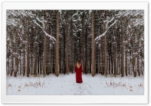 Woman in Red dress, Forest Trees, Winter Ultra HD Wallpaper for 4K UHD Widescreen desktop, tablet & smartphone
