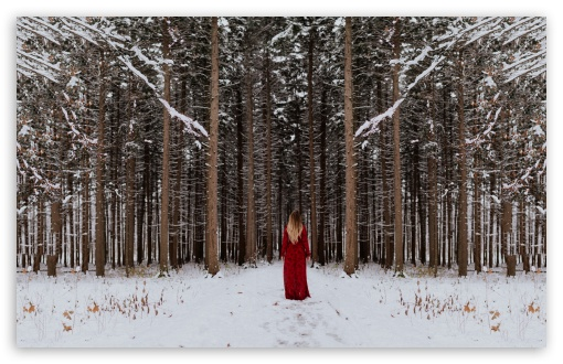 Woman in Red dress, Forest Trees, Winter UltraHD Wallpaper for Wide 16:10 5:3 Widescreen WHXGA WQXGA WUXGA WXGA WGA ; UltraWide 21:9 24:10 ; 8K UHD TV 16:9 Ultra High Definition 2160p 1440p 1080p 900p 720p ; UHD 16:9 2160p 1440p 1080p 900p 720p ; Standard 4:3 5:4 3:2 Fullscreen UXGA XGA SVGA QSXGA SXGA DVGA HVGA HQVGA ( Apple PowerBook G4 iPhone 4 3G 3GS iPod Touch ) ; Smartphone 16:9 3:2 5:3 2160p 1440p 1080p 900p 720p DVGA HVGA HQVGA ( Apple PowerBook G4 iPhone 4 3G 3GS iPod Touch ) WGA ; Tablet 1:1 ; iPad 1/2/Mini ; Mobile 4:3 5:3 3:2 16:9 5:4 - UXGA XGA SVGA WGA DVGA HVGA HQVGA ( Apple PowerBook G4 iPhone 4 3G 3GS iPod Touch ) 2160p 1440p 1080p 900p 720p QSXGA SXGA ;