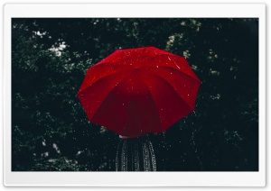 Woman, Red Umbrella, Rain Ultra HD Wallpaper for 4K UHD Widescreen desktop, tablet & smartphone