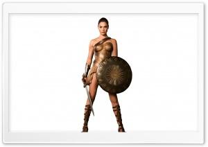 Wonder Woman Gal Gadot HD Wide Wallpaper for Widescreen