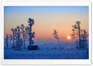 Wonderful Winter Morning HD Wide Wallpaper for Widescreen