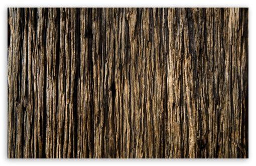Wood ❤ 4K UHD Wallpaper for Wide 16:10 5:3 Widescreen WHXGA WQXGA WUXGA WXGA WGA ; 4K UHD 16:9 Ultra High Definition 2160p 1440p 1080p 900p 720p ; UHD 16:9 2160p 1440p 1080p 900p 720p ; Standard 4:3 5:4 3:2 Fullscreen UXGA XGA SVGA QSXGA SXGA DVGA HVGA HQVGA ( Apple PowerBook G4 iPhone 4 3G 3GS iPod Touch ) ; Tablet 1:1 ; iPad 1/2/Mini ; Mobile 4:3 5:3 3:2 16:9 5:4 - UXGA XGA SVGA WGA DVGA HVGA HQVGA ( Apple PowerBook G4 iPhone 4 3G 3GS iPod Touch ) 2160p 1440p 1080p 900p 720p QSXGA SXGA ;