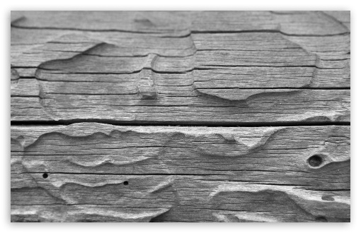 Wood HD wallpaper for Wide 16:10 5:3 Widescreen WHXGA WQXGA WUXGA WXGA WGA ; HD 16:9 High Definition WQHD QWXGA 1080p 900p 720p QHD nHD ; Standard 4:3 5:4 3:2 Fullscreen UXGA XGA SVGA QSXGA SXGA DVGA HVGA HQVGA devices ( Apple PowerBook G4 iPhone 4 3G 3GS iPod Touch ) ; Tablet 1:1 ; iPad 1/2/Mini ; Mobile 4:3 5:3 3:2 16:9 5:4 - UXGA XGA SVGA WGA DVGA HVGA HQVGA devices ( Apple PowerBook G4 iPhone 4 3G 3GS iPod Touch ) WQHD QWXGA 1080p 900p 720p QHD nHD QSXGA SXGA ;