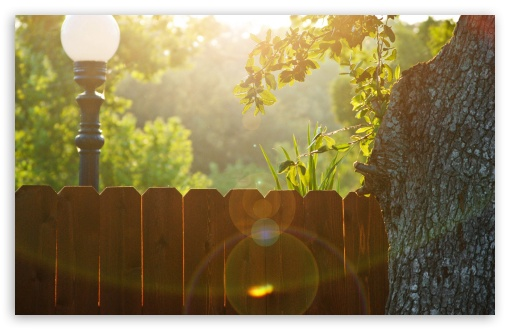 Wood Fence HD wallpaper for Wide 16:10 5:3 Widescreen WHXGA WQXGA WUXGA WXGA WGA ; HD 16:9 High Definition WQHD QWXGA 1080p 900p 720p QHD nHD ; Standard 4:3 5:4 3:2 Fullscreen UXGA XGA SVGA QSXGA SXGA DVGA HVGA HQVGA devices ( Apple PowerBook G4 iPhone 4 3G 3GS iPod Touch ) ; Tablet 1:1 ; iPad 1/2/Mini ; Mobile 4:3 5:3 3:2 16:9 5:4 - UXGA XGA SVGA WGA DVGA HVGA HQVGA devices ( Apple PowerBook G4 iPhone 4 3G 3GS iPod Touch ) WQHD QWXGA 1080p 900p 720p QHD nHD QSXGA SXGA ;