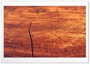 Wood Log HD Wide Wallpaper for 4K UHD Widescreen desktop & smartphone