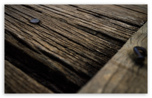 Wood Planks ❤ 4K UHD Wallpaper for Wide 16:10 5:3 Widescreen WHXGA WQXGA WUXGA WXGA WGA ; UltraWide 21:9 24:10 ; 4K UHD 16:9 Ultra High Definition 2160p 1440p 1080p 900p 720p ; UHD 16:9 2160p 1440p 1080p 900p 720p ; Standard 4:3 5:4 3:2 Fullscreen UXGA XGA SVGA QSXGA SXGA DVGA HVGA HQVGA ( Apple PowerBook G4 iPhone 4 3G 3GS iPod Touch ) ; Smartphone 16:9 3:2 5:3 2160p 1440p 1080p 900p 720p DVGA HVGA HQVGA ( Apple PowerBook G4 iPhone 4 3G 3GS iPod Touch ) WGA ; Tablet 1:1 ; iPad 1/2/Mini ; Mobile 4:3 5:3 3:2 16:9 5:4 - UXGA XGA SVGA WGA DVGA HVGA HQVGA ( Apple PowerBook G4 iPhone 4 3G 3GS iPod Touch ) 2160p 1440p 1080p 900p 720p QSXGA SXGA ;