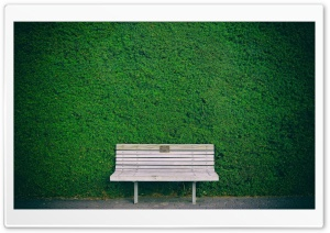 Wooden Bench, Green Hedge HD Wide Wallpaper for Widescreen