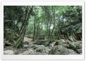 Wooden Bridge, Aiguafreda Ultra HD Wallpaper for 4K UHD Widescreen desktop, tablet & smartphone