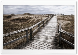 Wooden Bridge Leading To The Beach HD Wide Wallpaper for 4K UHD Widescreen desktop & smartphone