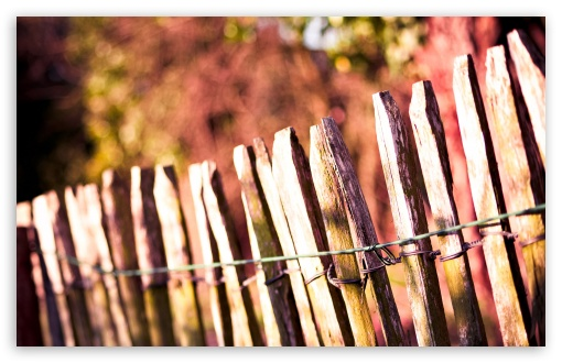 Wooden Fence HD wallpaper for Wide 16:10 5:3 Widescreen WHXGA WQXGA WUXGA WXGA WGA ; HD 16:9 High Definition WQHD QWXGA 1080p 900p 720p QHD nHD ; Standard 4:3 5:4 3:2 Fullscreen UXGA XGA SVGA QSXGA SXGA DVGA HVGA HQVGA devices ( Apple PowerBook G4 iPhone 4 3G 3GS iPod Touch ) ; Tablet 1:1 ; iPad 1/2/Mini ; Mobile 4:3 5:3 3:2 16:9 5:4 - UXGA XGA SVGA WGA DVGA HVGA HQVGA devices ( Apple PowerBook G4 iPhone 4 3G 3GS iPod Touch ) WQHD QWXGA 1080p 900p 720p QHD nHD QSXGA SXGA ;