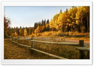 Wooden Fence Along A Road HD Wide Wallpaper for 4K UHD Widescreen desktop & smartphone
