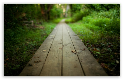 Wooden Path HD wallpaper for Wide 16:10 5:3 Widescreen WHXGA WQXGA WUXGA WXGA WGA ; HD 16:9 High Definition WQHD QWXGA 1080p 900p 720p QHD nHD ; Standard 4:3 5:4 3:2 Fullscreen UXGA XGA SVGA QSXGA SXGA DVGA HVGA HQVGA devices ( Apple PowerBook G4 iPhone 4 3G 3GS iPod Touch ) ; Tablet 1:1 ; iPad 1/2/Mini ; Mobile 4:3 5:3 3:2 16:9 5:4 - UXGA XGA SVGA WGA DVGA HVGA HQVGA devices ( Apple PowerBook G4 iPhone 4 3G 3GS iPod Touch ) WQHD QWXGA 1080p 900p 720p QHD nHD QSXGA SXGA ; Dual 16:10 5:3 16:9 4:3 5:4 WHXGA WQXGA WUXGA WXGA WGA WQHD QWXGA 1080p 900p 720p QHD nHD UXGA XGA SVGA QSXGA SXGA ;