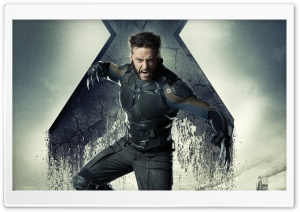 X-Men Days of Future Past Hugh Jackman HD Wide Wallpaper for Widescreen