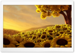 Yellow Field HD Wide Wallpaper for Widescreen