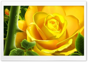 Yellow Rose Illustration HD Wide Wallpaper for Widescreen