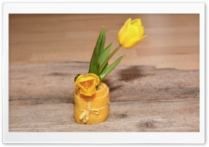 Yellow Tulips, Cute Decoration, Wooden Table HD Wide Wallpaper for Widescreen