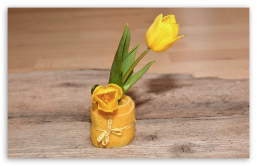 Yellow Tulips, Cute Decoration, Wooden Table ❤ 4K UHD Wallpaper for Wide 16:10 5:3 Widescreen WHXGA WQXGA WUXGA WXGA WGA ; 4K UHD 16:9 Ultra High Definition 2160p 1440p 1080p 900p 720p ; UHD 16:9 2160p 1440p 1080p 900p 720p ; Standard 4:3 5:4 3:2 Fullscreen UXGA XGA SVGA QSXGA SXGA DVGA HVGA HQVGA ( Apple PowerBook G4 iPhone 4 3G 3GS iPod Touch ) ; Smartphone 5:3 WGA ; Tablet 1:1 ; iPad 1/2/Mini ; Mobile 4:3 5:3 3:2 16:9 5:4 - UXGA XGA SVGA WGA DVGA HVGA HQVGA ( Apple PowerBook G4 iPhone 4 3G 3GS iPod Touch ) 2160p 1440p 1080p 900p 720p QSXGA SXGA ;
