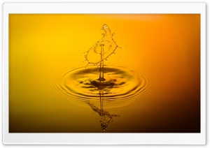 Yellow Water Droplet HD Wide Wallpaper for Widescreen