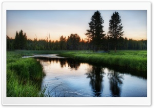 Yellowstone Stream HD Wide Wallpaper for Widescreen