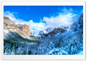 Yosemite Snow Valley HD Wide Wallpaper for Widescreen