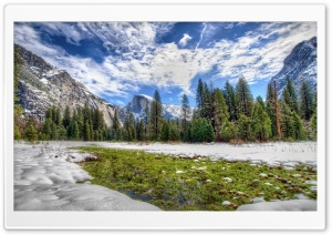 Yosemite Spring Grass HD Wide Wallpaper for Widescreen