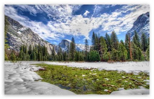 Yosemite Spring Grass ❤ 4K UHD Wallpaper for Wide 16:10 5:3 Widescreen WHXGA WQXGA WUXGA WXGA WGA ; 4K UHD 16:9 Ultra High Definition 2160p 1440p 1080p 900p 720p ; Standard 4:3 5:4 3:2 Fullscreen UXGA XGA SVGA QSXGA SXGA DVGA HVGA HQVGA ( Apple PowerBook G4 iPhone 4 3G 3GS iPod Touch ) ; Smartphone 5:3 WGA ; Tablet 1:1 ; iPad 1/2/Mini ; Mobile 4:3 5:3 3:2 16:9 5:4 - UXGA XGA SVGA WGA DVGA HVGA HQVGA ( Apple PowerBook G4 iPhone 4 3G 3GS iPod Touch ) 2160p 1440p 1080p 900p 720p QSXGA SXGA ; Dual 16:10 5:3 16:9 4:3 5:4 WHXGA WQXGA WUXGA WXGA WGA 2160p 1440p 1080p 900p 720p UXGA XGA SVGA QSXGA SXGA ;