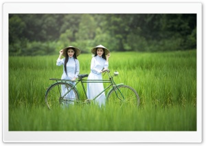 Young Women in a White Ao Dai HD Wide Wallpaper for Widescreen