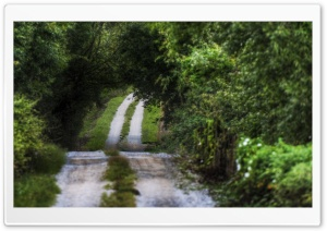Your Road Ahead HD Wide Wallpaper for Widescreen