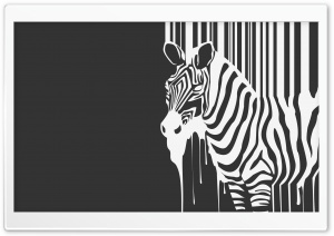 Zebra Melting HD Wide Wallpaper for Widescreen