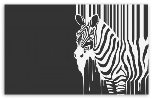 Zebra Melting HD wallpaper for Wide 16:10 5:3 Widescreen WHXGA WQXGA WUXGA WXGA WGA ; HD 16:9 High Definition WQHD QWXGA 1080p 900p 720p QHD nHD ; Standard 4:3 5:4 3:2 Fullscreen UXGA XGA SVGA QSXGA SXGA DVGA HVGA HQVGA devices ( Apple PowerBook G4 iPhone 4 3G 3GS iPod Touch ) ; Tablet 1:1 ; iPad 1/2/Mini ; Mobile 4:3 5:3 3:2 16:9 5:4 - UXGA XGA SVGA WGA DVGA HVGA HQVGA devices ( Apple PowerBook G4 iPhone 4 3G 3GS iPod Touch ) WQHD QWXGA 1080p 900p 720p QHD nHD QSXGA SXGA ;