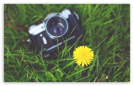 Zenit Camera and a Dandelion Flower ❤ 4K UHD Wallpaper for Wide 16:10 5:3 Widescreen WHXGA WQXGA WUXGA WXGA WGA ; 4K UHD 16:9 Ultra High Definition 2160p 1440p 1080p 900p 720p ; UHD 16:9 2160p 1440p 1080p 900p 720p ; Standard 4:3 5:4 3:2 Fullscreen UXGA XGA SVGA QSXGA SXGA DVGA HVGA HQVGA ( Apple PowerBook G4 iPhone 4 3G 3GS iPod Touch ) ; Smartphone 5:3 WGA ; Tablet 1:1 ; iPad 1/2/Mini ; Mobile 4:3 5:3 3:2 16:9 5:4 - UXGA XGA SVGA WGA DVGA HVGA HQVGA ( Apple PowerBook G4 iPhone 4 3G 3GS iPod Touch ) 2160p 1440p 1080p 900p 720p QSXGA SXGA ;