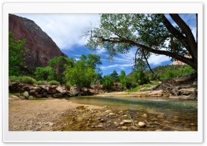Zion National Park 1 HD Wide Wallpaper for Widescreen